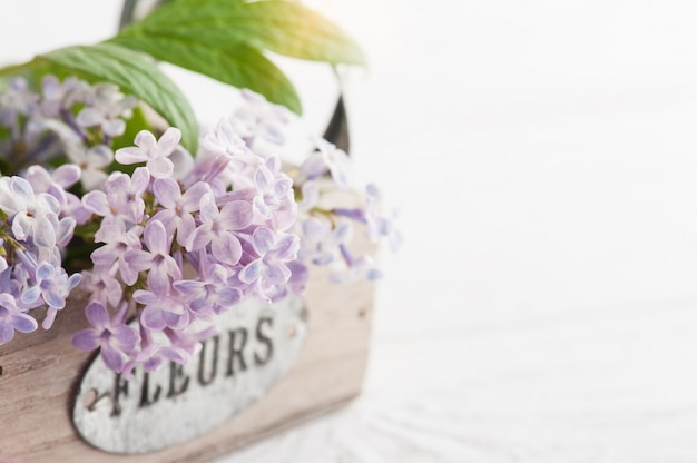 Lilac flowers in box closeup