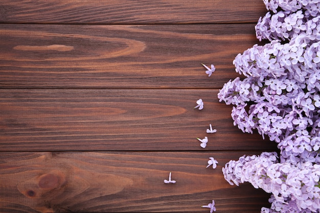 Lilac flowers branch on brown  with copyspace
