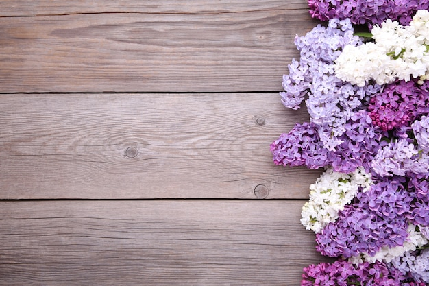 Lilac flowers branch on grey background  with copyspace