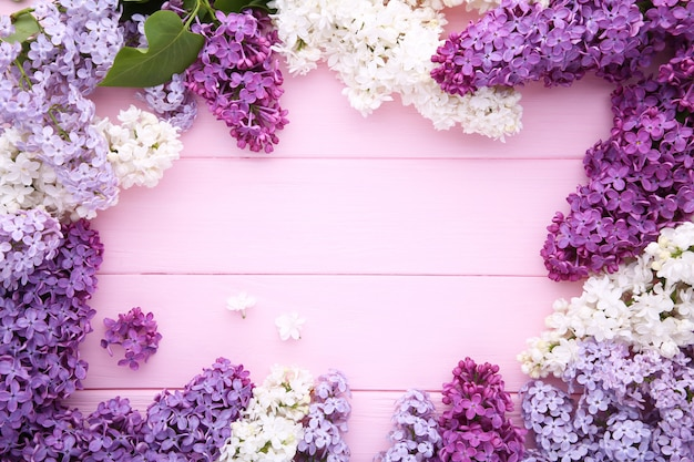 Lilac flowers branch on pink background  with copyspace