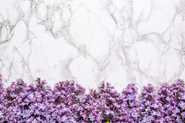 Lilac flowers on marble background with copyspace. summer color and holiday concept.