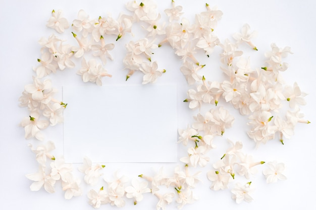 Lilac flowers on a white background flat lay top view copy space floral frame