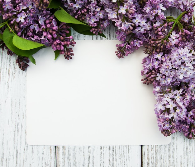Lilac flowers with empty card
