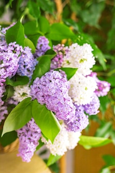 Lilac multycolored flower branches closeup on wooden table blurred background