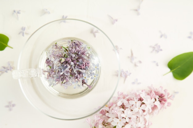 Lilac petals in glass cup on white
