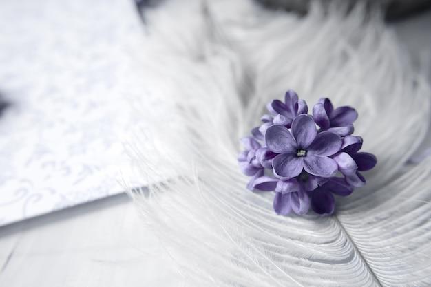 Сиреневые цветы фиалки на белом страусином перьях сиреневый цветок удачи с пятью лепесткамиl