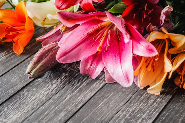 Lilies flowers on dark background with copy space