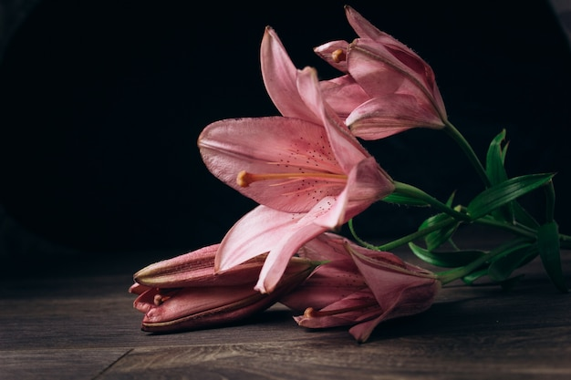 Lilies flowers on dark wooden background with copy space