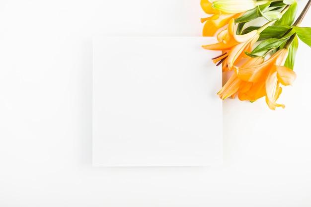 Lilies near paper sheet