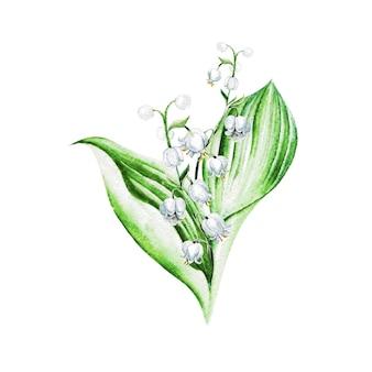 계곡 꽃의 백합. 수채화 손으로 그린 그림입니다.