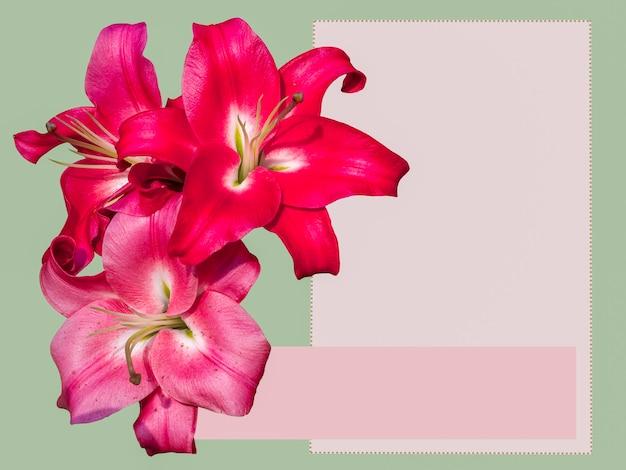 緑の背景にユリの花。お祝いのグリーティングカード。テキスト用の空のスペース。