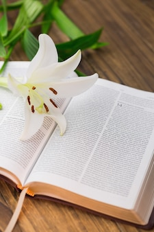 오픈 성경에 백합 꽃
