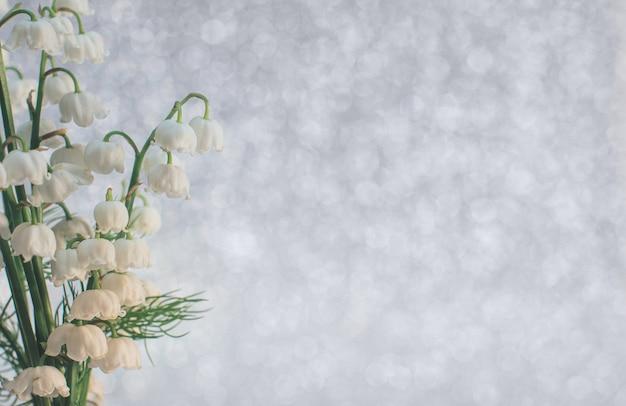 スズランの花は、ライトグレーの背景に選択的に焦点を当ててクローズアップの美しさ