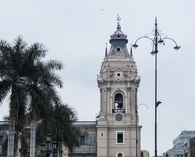 전염병 기간 동안 비어 있는 리마 메인 광장, 리마 대성당, 대주교 궁전, 메인 광장의 야자수