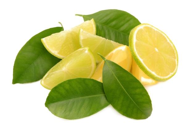 라임과 레몬 흰색 배경