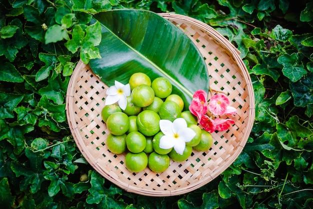 바구니에 라임 감귤류 과일