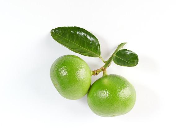 Lime. frutta fresca con foglia isolata sulla superficie bianca. è appena raccolto dall'orto biologico di crescita domestica. concetto di cibo.