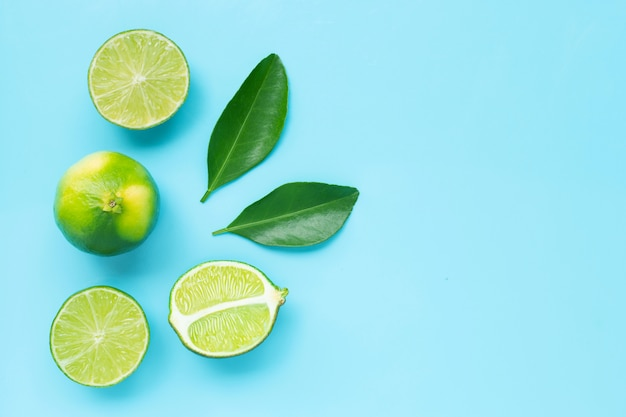 Limes with leaves on blue background.