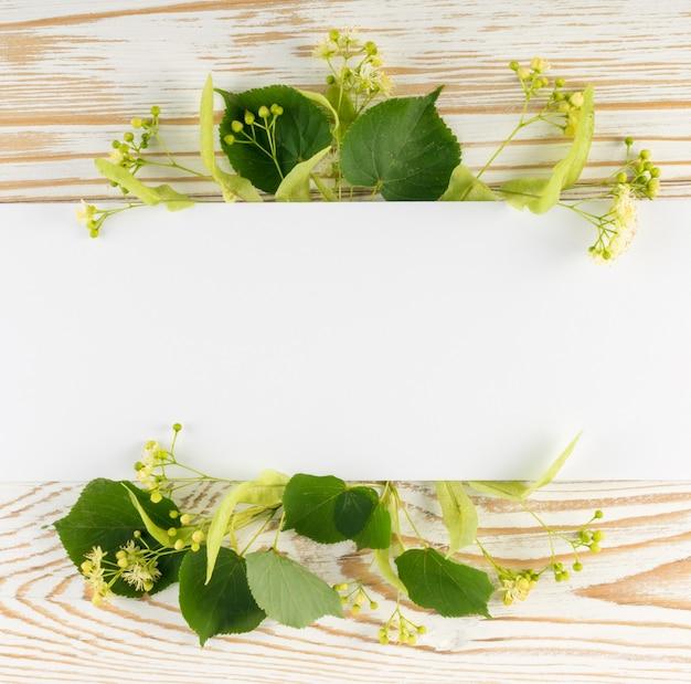 木製のテーブルの上のリンデンの花。木のテーブルの上の創造的な夏のレイアウト。ティリアブロッサムフラットレイ