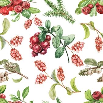 リンゴンベリーベリー。手描きの水彩パターン。