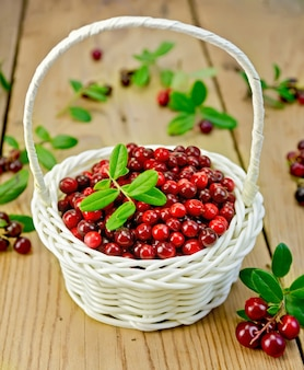 Lingonberry with leaves in a white wicker basket, twigs with leaves and red ripe berries cranberries against a wooden board