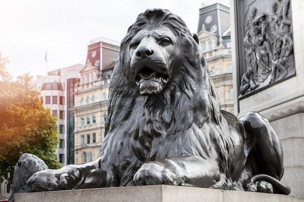 Лев на трафальгарской площади лондон, великобритания