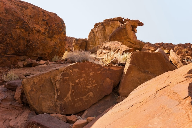 Lion plate with lion man and other bushman prehistoric rock engravings at twyfelfontein namibia