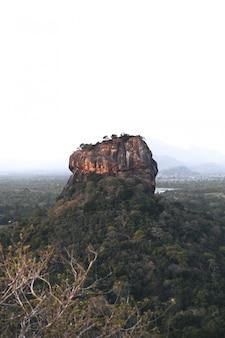 Lion rock at the morning in sri lanka