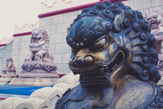 Lion statue in front of chinese bronze lion temp