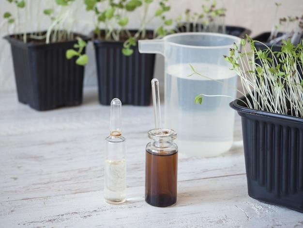 Жидкое удобрение для рассады. весенний уход за растениями. энергия роста растений.