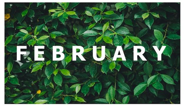 List of calendar months designed on a natural green leaf background Premium Photo