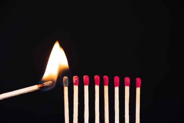 Lit match next to a row of unlit matches. the passion of one ignites new ideas