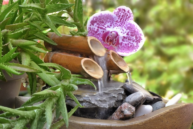 Litle decorative fountain and orchid in a garden