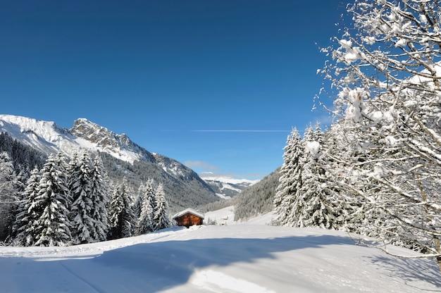 Littel cottage in mountain