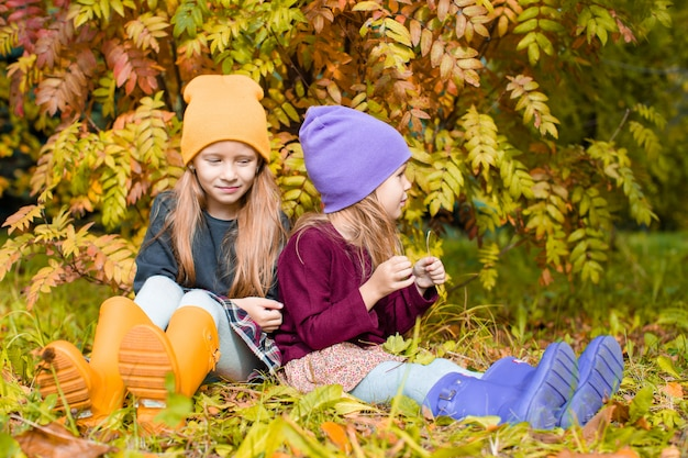 Little adorable girls at warm sunny autumn day outdoors