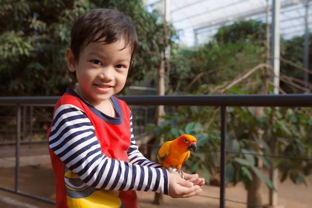 Маленький азиатский мальчик играет с птицей в зоопарке Premium Фотографии