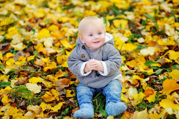 Little baby boy in the autumn park
