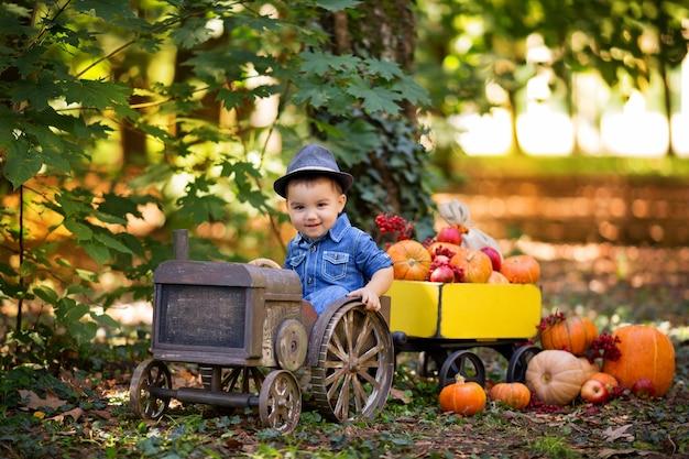 Маленький мальчик в тракторе с тележкой с тыквами, калиной, рябиной, яблоками, осенним урожаем