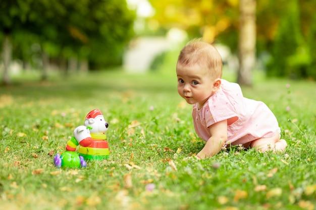 Маленькая девочка 7 месяцев играет на зеленой лужайке в розовом боди