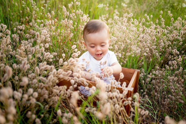 Маленькая девочка 7 месяцев сидит среди полевой травы в белом платье, здоровая прогулка на свежем воздухе