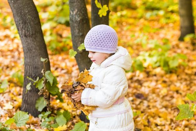 公園で紅葉の小さな女の赤ちゃん