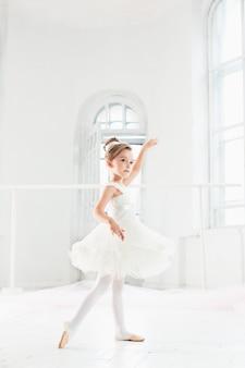 Little ballerina girl in a tutu