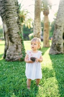 裸足の少女は、大きなトウヒの円錐形を手にしたヤシの木の下の緑の芝生の上に立っています