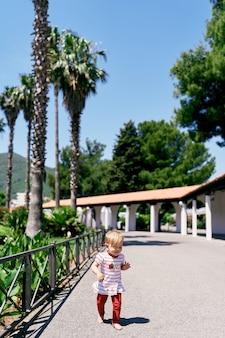 小さな裸足の少女は、ヤシの木を背景に緑豊かな公園を歩きます