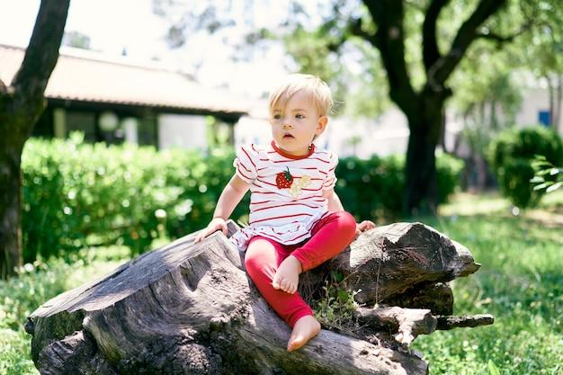 緑の公園の巨大な木の切り株に座っている裸足の小さな子供