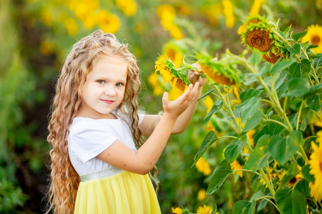 A little beautiful girl holds a sunflower in a field in summer.