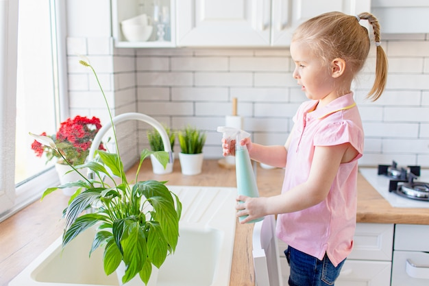 Little blonde girl holding spray bottle with water, waters green plant at home, helps his mother about house. child studies plant attentively