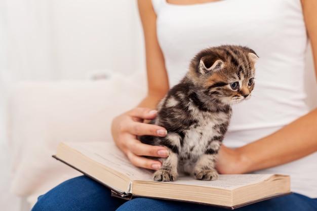 Маленький книжный червь. милый маленький котенок сидит на открытой книге, пока его гладит женщина
