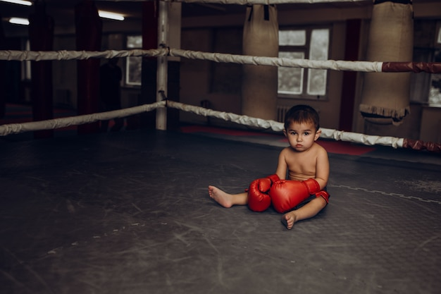 A little boy in boxing gloves sits on the floor of the ring.