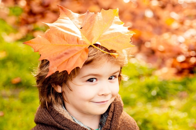 Little boy child with autumn leaves